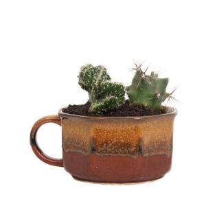 4811-cactussen-vintage-pot-soepkom-bruin-1