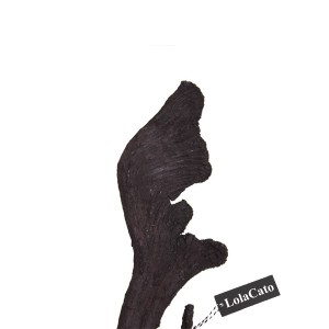 4861-LolaCato-gedroogde-natraj-zwart-2