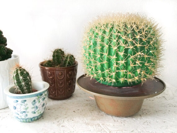 vintage cactus lamp
