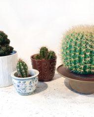 5221-vintage-cactus-lamp-bol-4