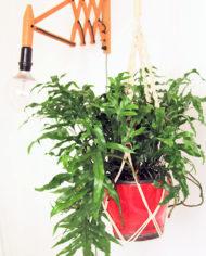 Grote macrame plantenhanger