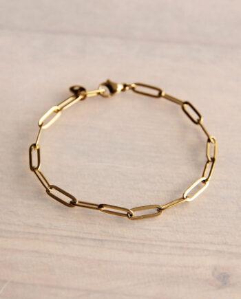 Bazou stalen chain armband goud- of zilverkleurig