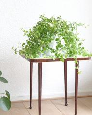 Elegant vintage plantentafeltje