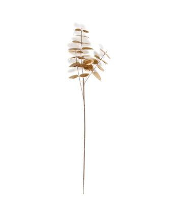 Goudkleurige eucalyptustak &Klevering