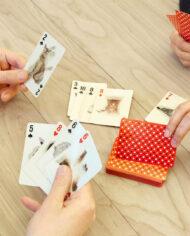 Kaartspel Kikkerland met 3D katten
