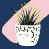 Mikamodo bloempot krullend macaroni kapsel