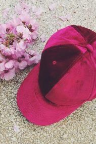 cherry-pink-burgundy-velvet-pet-2