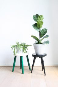 groen-wit-plantentafeltje-botanisch-schildering-japans-krukje-driepoot-4