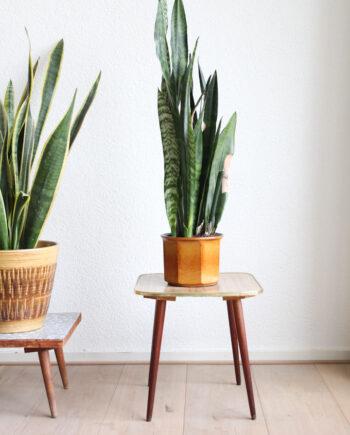 houten plantentafeltje