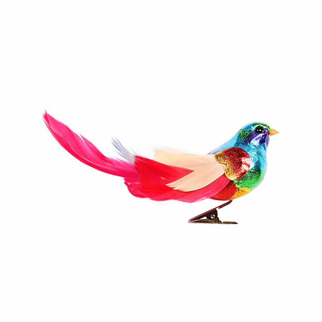 &klevering rainbow birds