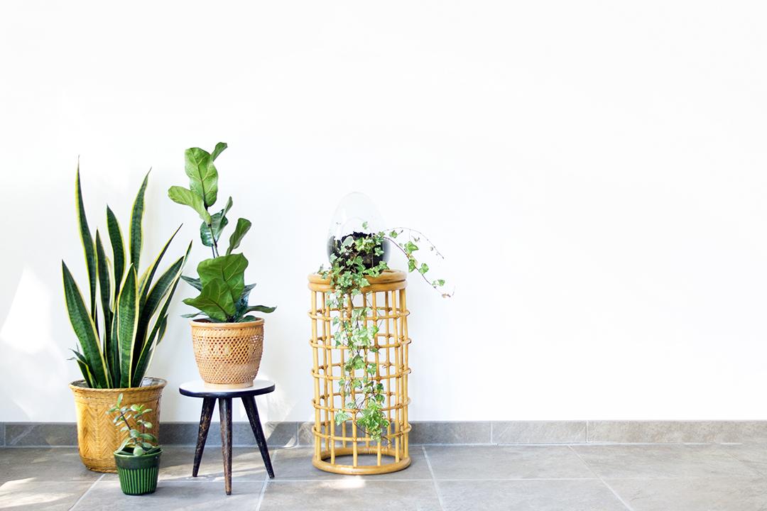 Vintage bamboe plantentafeltje paraplubak froufrou 39 s for Interieur accessoires webshop