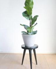 zwart-plantentafeltje-krukje-driepoot-2